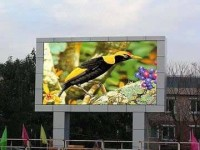 led-display